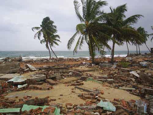 Tsunami - Kalmunai