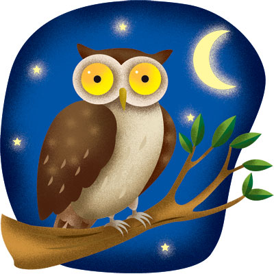 Thangachi's Corner: Early Birds and Night Owls